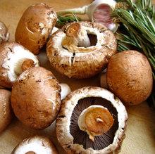 Mushroom Punnet 150g