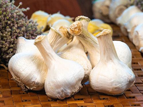 Certified Organic Russian Garlic