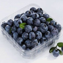 Blueberry 125g Punnet