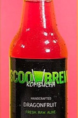 Scoo Brew Kombucha Dragon Fruit