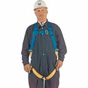North Vest-Style Universal Harnesses