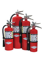 AMEREX ABC Multi-Purpose Stored Pressure Dry Chemical Extinguishers