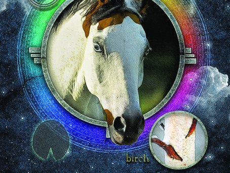 Create Your Own Reality With the Perception of Horse