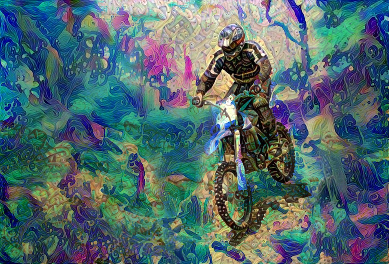 Bike11_HD_F_label
