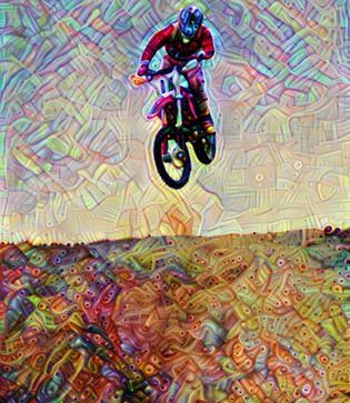 bike53_HD_F_label.jpg