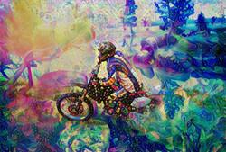 Bike2_HD_F_label