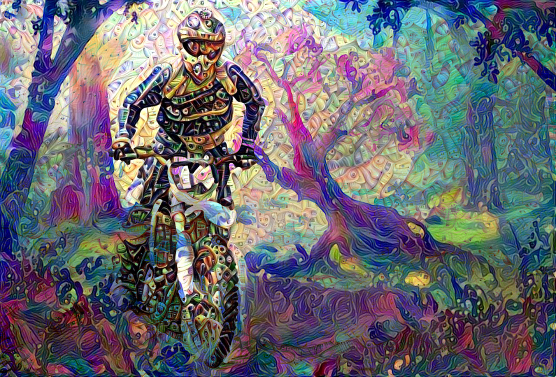 Bike18_HD_F_label.jpg