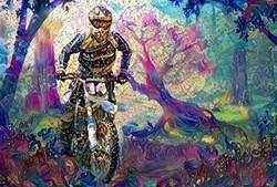 Bike18_HD_F_label