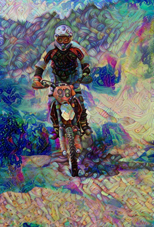 bike45_HD_F_label