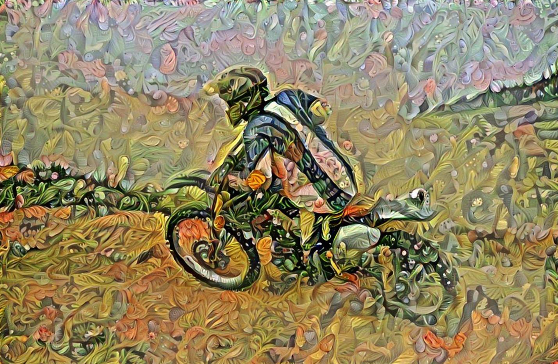 bike26_HD_label.jpg