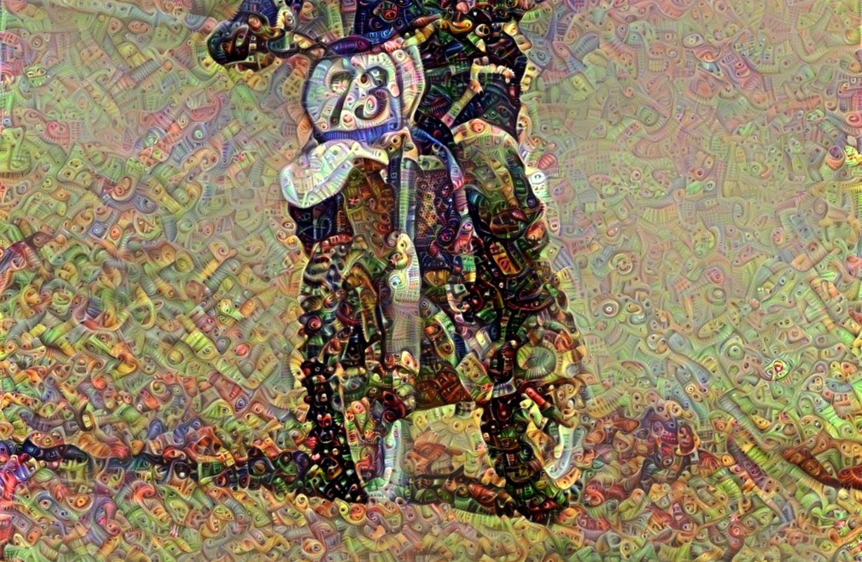 bike58_HD_F_label.jpg