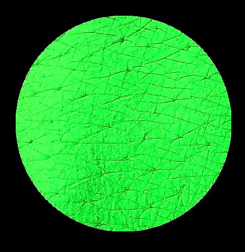 Tala Pigments Neon Green 2ml