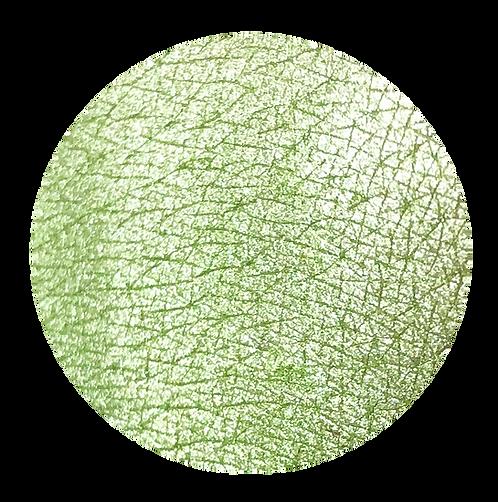 Tala Pigments Pistachio 2ml