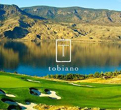 Tobiano-Photo.jpg