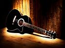 woodstock acoustic.png