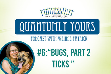 #6: Bugs, Part 2 - Ticks - Quantumly Yours (Finnessiam Health's Podcast)