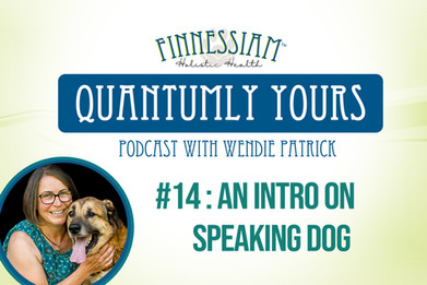 #14 : An Intro on speaking dog - Quantumly Yours (Finnessiam Health's Podcast)