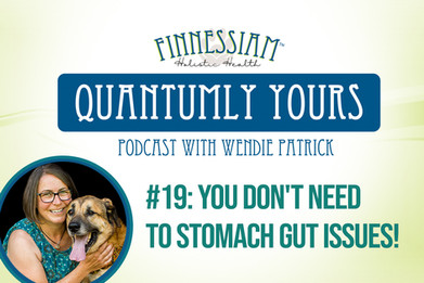 #19 You Don't Need to Stomach Gut Issues!  - Quantumly Yours (Finnessiam Health's Podcast)