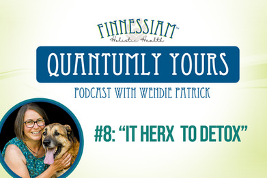 #8: It Herx To Detox - Quantumly Yours (Finnessiam Health's Podcast)