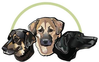 Nova Scotia, Canada, high quality pet shampoo and supplies, pet skin care professional, Retired Master Groomer, Natural alternative and holistic health for pets, safer ingredients NO PARABENS SLS free, no pesticides; Pure Paws Official Canadian Distributor,  Finnessiam brand, small business. Safer pet products. Professional pet expert. Pet Supplies Canada, Cats, Horses, Dogs, Smart Oil the SAFE CBD Alternative