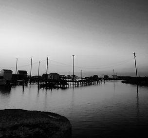 Crab shanties, dawn.jpg