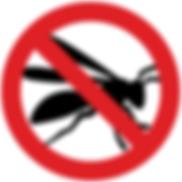 norm_wasps_2.jpg