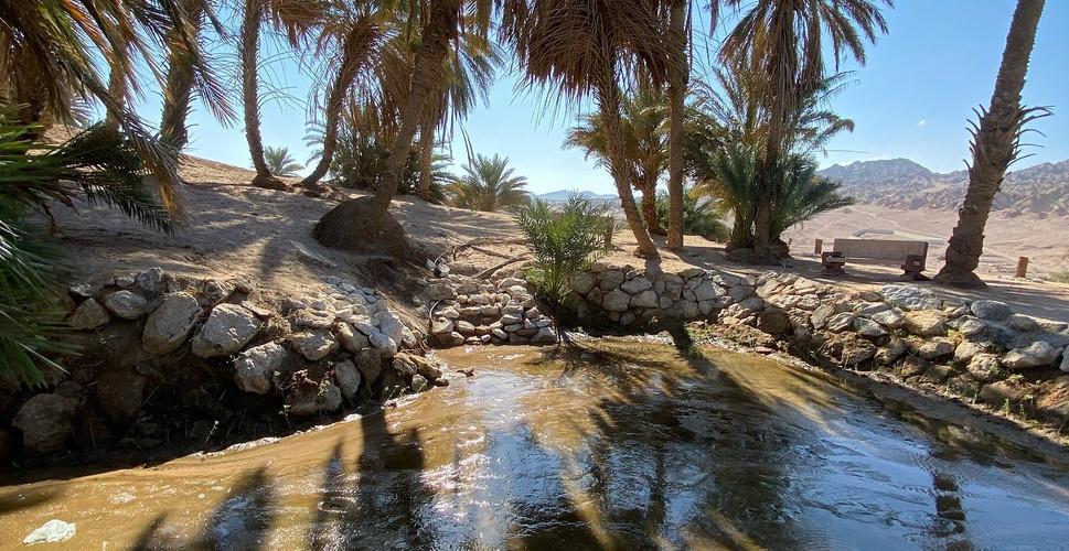 Spring of Moses, Magna, Saudi Arabia.