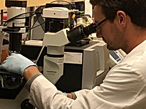 Andres microscope2.JPG