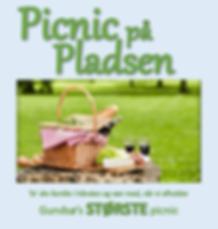 picnic-1.png