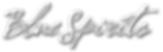 bs LOGO.png