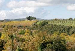 Castel San Gimignano cemetery