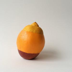 Genomic Grapefruit