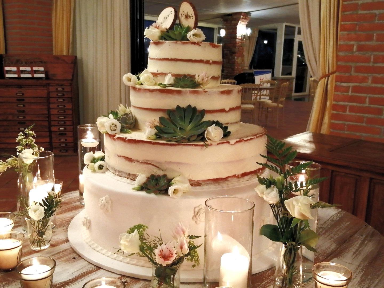 Naked Cake con Piante Succulente