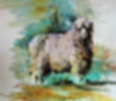 Lincoln Longwool.JPG