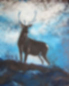 Blue Stag in Silhouette 2.JPG
