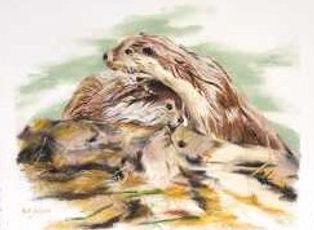 Otterley Devoted