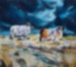 Stormy Skye.jpg