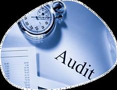 sanidad_auditoria.png