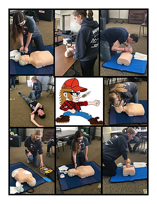 CPR Collage1.png