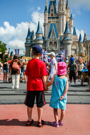 © Yakir Zur, Disney World, Florida