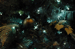 stwcb-christmas2014-49
