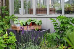 stwcb-garden2016-34