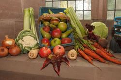 stwcb-harvest2015-13