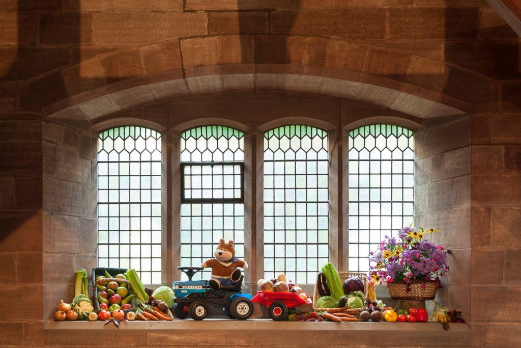 stwcb-harvest2015-11
