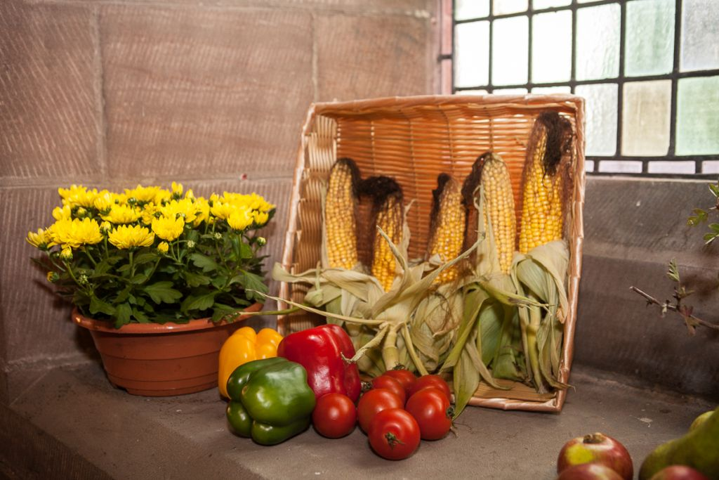 stwcb-harvest2015-20