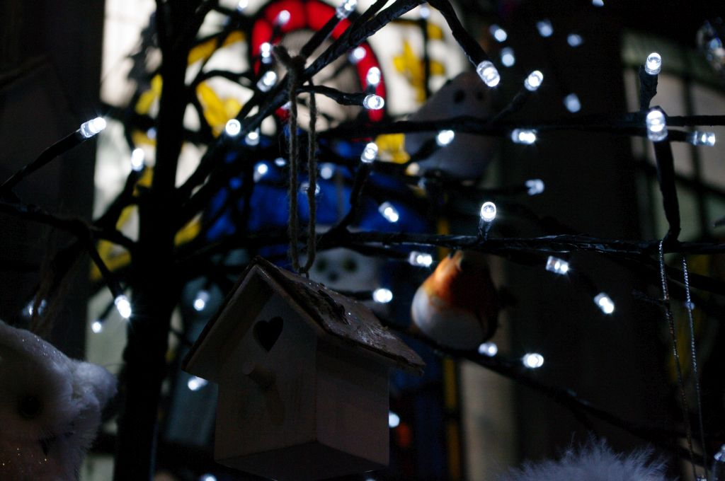 stwcb-christmas2014-13