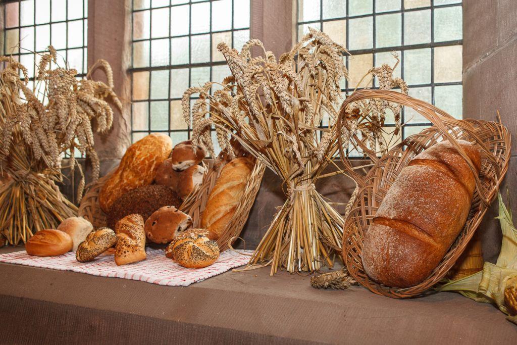 stwcb-harvest2015-24