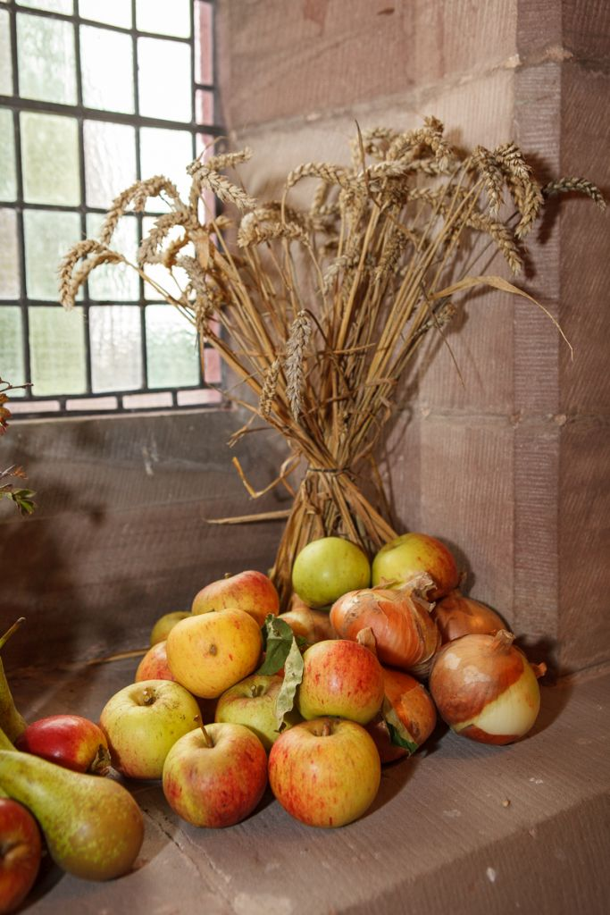 stwcb-harvest2015-21