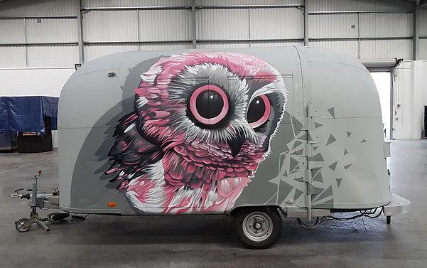 owl.2.jpg