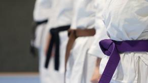 """Die Abteilung """"Karate"""" stellt sich vor"""